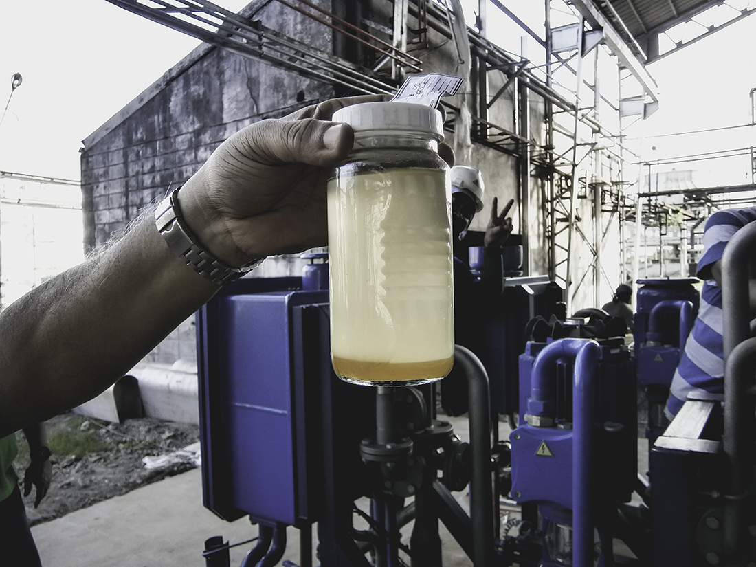 production of biodiesel