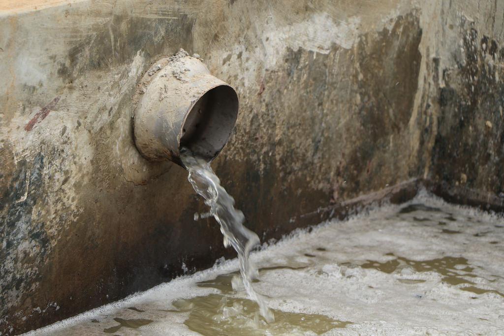 Purificación de aguas residuales de fenol